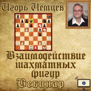 Взаимодействие шахматных фигур. Шахматы